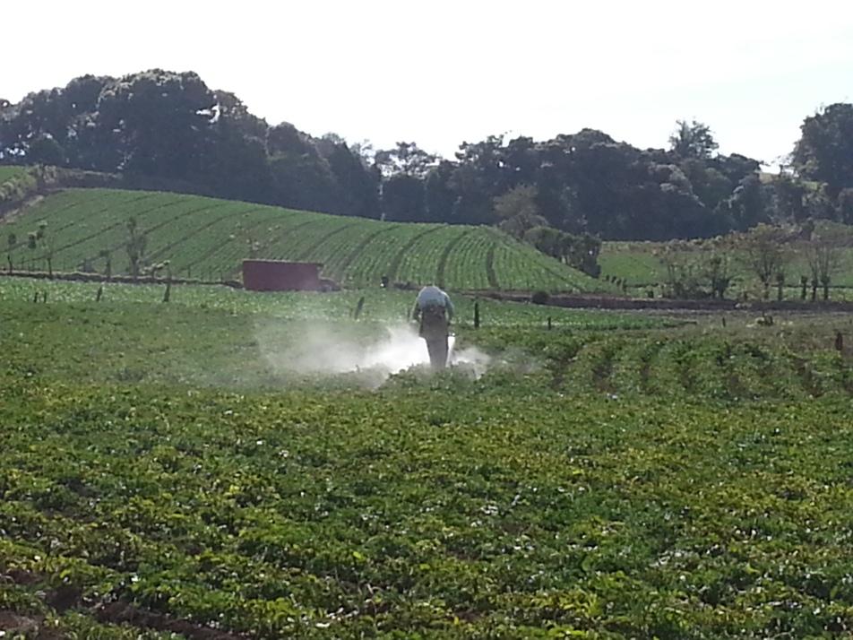 CICA promueve buenas prácticas agrícolas